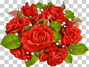 Rose Flower Bouquet Stock Photography PNG