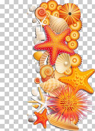 Ocean Wind Wave Sea Cartoon PNG