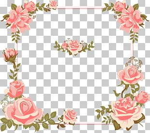 Euclidean Rose Flower Pink Icon PNG