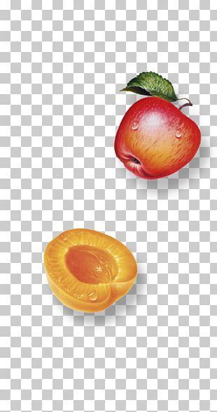 Juice Nectar Food Fruchtsaft Fruit PNG