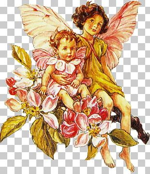 The Flower Fairies Alphabet Coloring Book A Flower Fairy Alphabet PNG