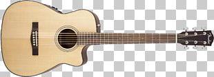 Twelve-string Guitar Fender Musical Instruments Corporation Acoustic-electric Guitar Steel-string Acoustic Guitar PNG