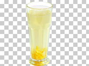 Orange Juice Harvey Wallbanger Beer Orange Drink PNG