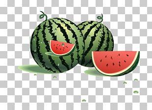 Watermelon Fruit Cucumber PNG