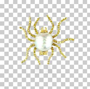 Brooch Jewellery Buccellati Gold Pearl PNG