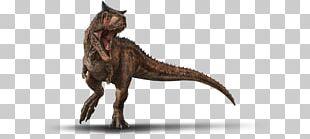 Carnotaurus Jurassic Park Builder Jurassic World Evolution Mosasaurus Dinosaur PNG