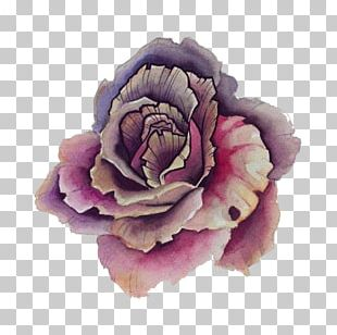 Sticker Flower Wall Decal Purple Rose PNG