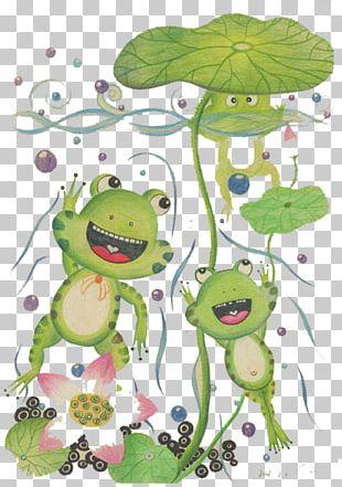 Tree Frog Illustration PNG