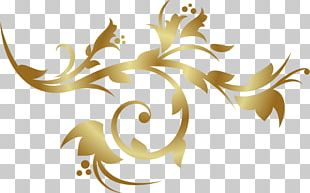 Ornament Gold Decorative Arts PNG