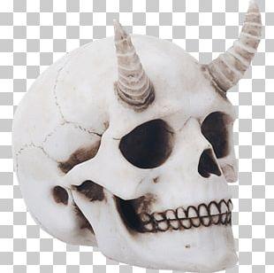 Human Skull Horn Skeleton Calavera PNG