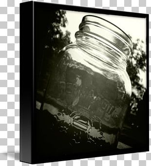 Monochrome Photography Black And White Still Life Photography PNG