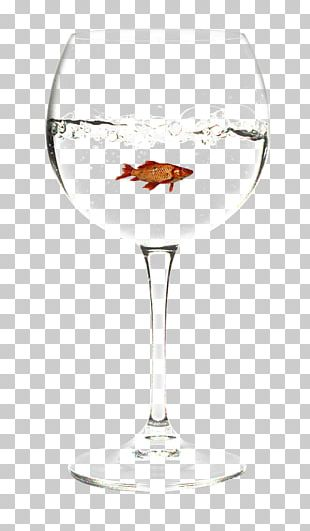 Wine Glass White Wine Wine Cocktail PNG
