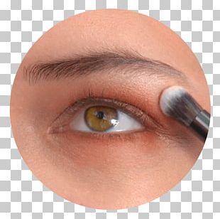 Eyelash Extensions Eye Shadow Close-up PNG
