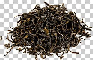 Thai Tea Assam Tea Oolong Green Tea PNG