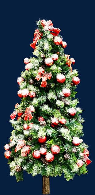 Beautiful Christmas Tree Material PNG