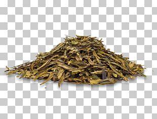 Romeritos Damiana Pumpkin Seed Golden Monkey Tea Herbalism PNG