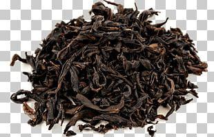 Lapsang Souchong Green Tea Oolong Keemun PNG