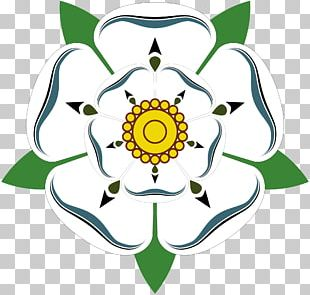 White Rose Of York Wars Of The Roses Red Rose Of Lancaster PNG