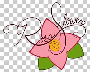 Floral Design Petal Cut Flowers PNG