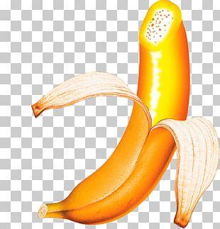 Banana Pudding Fruit Computer File PNG