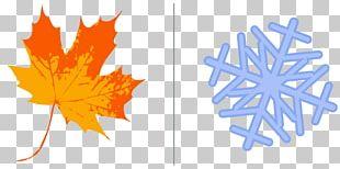 Autumn Leaf Color Maple Leaf Sassafras PNG