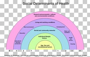 Social Determinants Of Health Health Care Public Health Population Health PNG