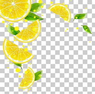 Juice Lemon Key Lime Grapefruit Tangerine PNG
