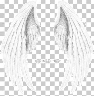Angel Wing Angel Wing Black And White PNG