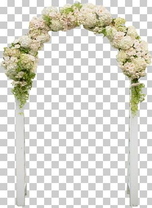 Cape Cod Wedding Photography Bride Ceremony PNG