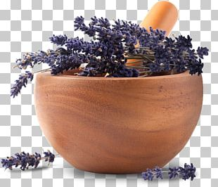 Essential Oil Lavender Oil Herb Apothecary PNG