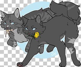 Black Cat Kitten Whiskers Dog PNG