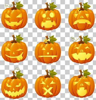 Pumpkin Pie Halloween Jack-o'-lantern PNG