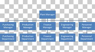 Organizational Structure Hierarchical Organization Organizational Chart PNG