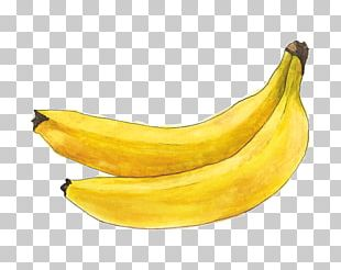 Saba Banana Cooking Banana Fruit Apricot PNG