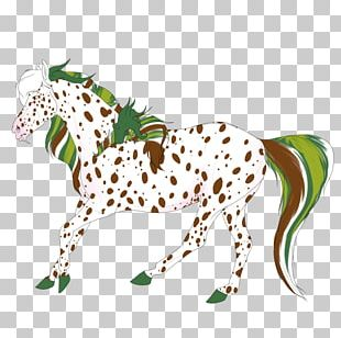 Horse Cat Pack Animal Terrestrial Animal PNG