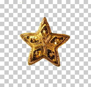 Christmas Ornament Christmas Decoration Star Of Bethlehem Christmas Card PNG