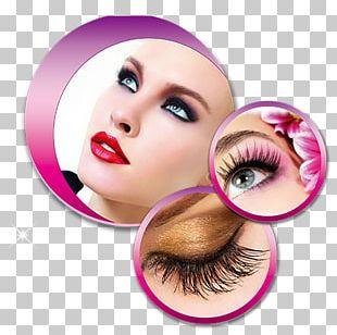 Eyelash Extensions Cosmetics Beauty Eye Shadow PNG