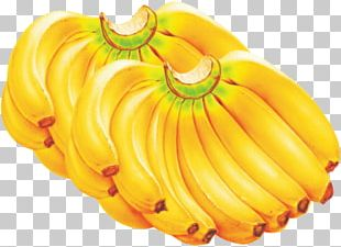 Banana Bread Cavendish Banana Cooking Banana Fruit PNG