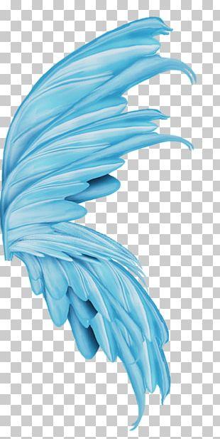 Devil Angel Wing PNG