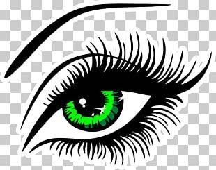 Eyelash Extensions Eye Liner PNG