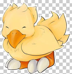Duck Illustration Beak Chicken As Food PNG