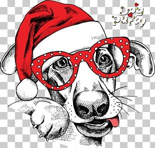 Dog Santa Claus Christmas Card New Year PNG