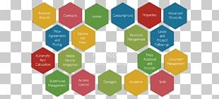 Hexagon Stock Photography Color PNG