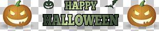 Halloween Bat Jack-o-lantern Pumpkin PNG
