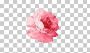 Paper T-shirt Flower Sticker Watercolor Painting PNG