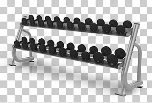 Dumbbell Bench Exercise Equipment Barbell Weight Training PNG