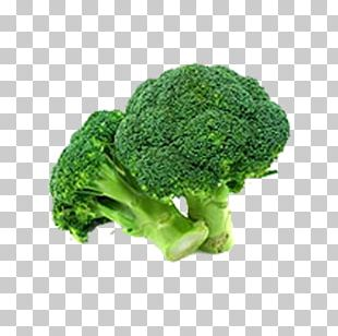 Broccoli Vegetable Food Variety PNG