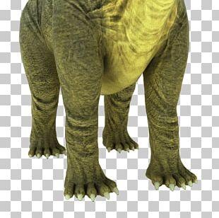 Brontosaurus Apatosaurus Animation 3D Computer Graphics Rendering PNG