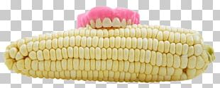 Dentures Human Tooth Corn On The Cob Dentistry PNG