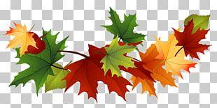Maple Leaf Garland PNG